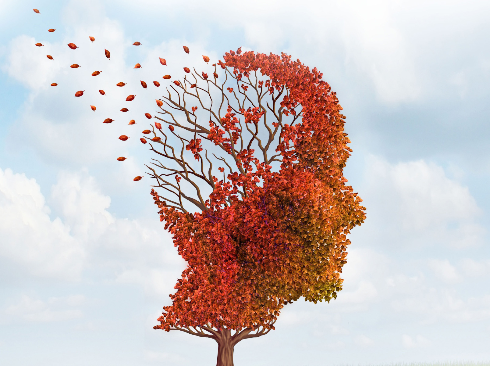 alzheimers and melatonin