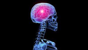 folic acid brain