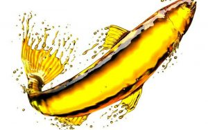 fish oil on weight loss